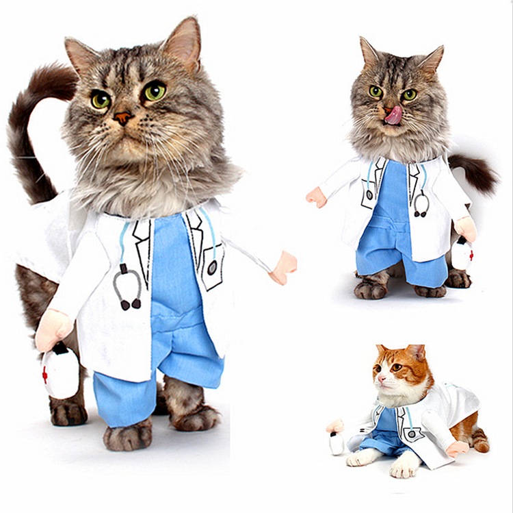 Nuevos productos para mascotas perro m dico traje ropa - Disfraces de gatos para ninos ...