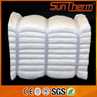 High Aluminum Multifunctional ceramic fiber module with high quality