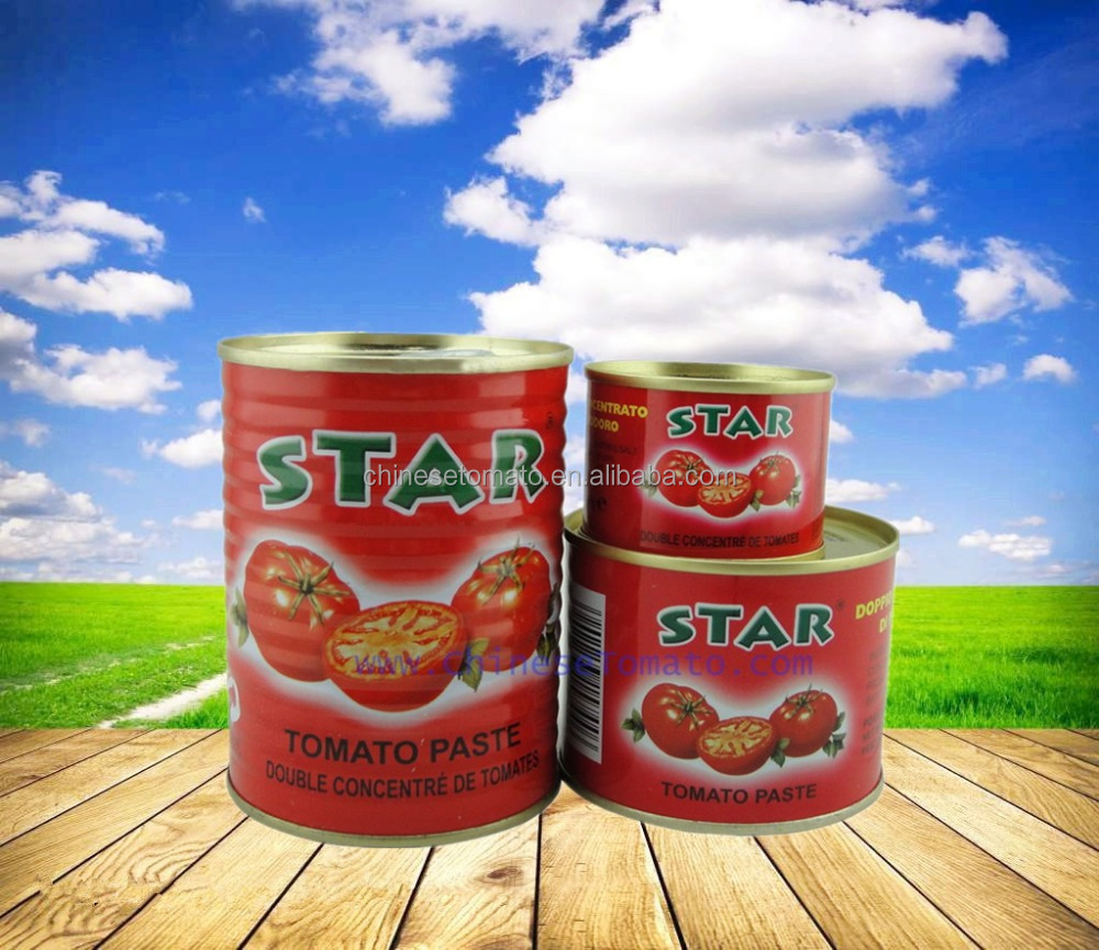 210g tomato paste processing plant gino tomato paste price turkish tomato paste