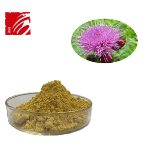 factory supply Water Soluble Milk Thistle Extract Silymarin Extract Powder Silymarin Milk Thistle Extract