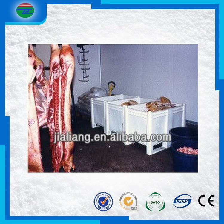 Latest Fashion first Choice fresh chicken/meat/beef cold storage/cold room