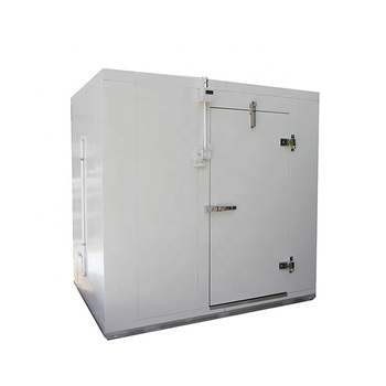 40 Feet Cold Room Containers Mini Blast Freezer For