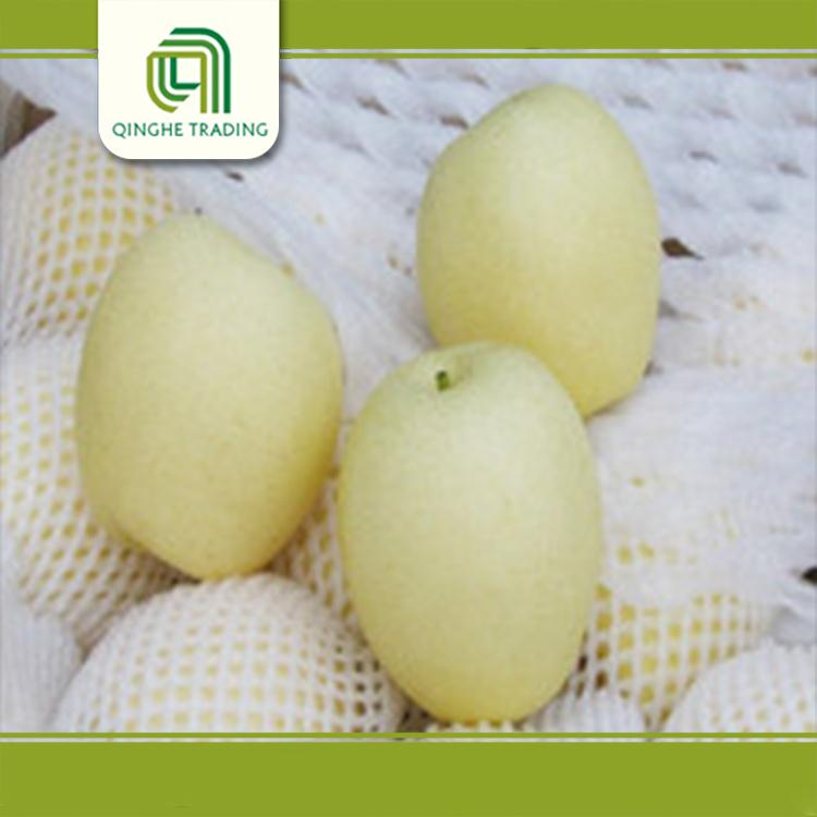 Hot selling good quality pear from china