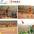 educational kit for kids athletics in school sports