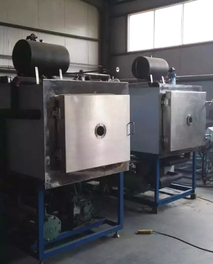 Tpv-10fd Vegetable Fruit Freeze Drying Lyophilizer Equipment - Buy  Vegetable Fruit Freeze Drying Lyophilizer,Freeze Drying,Manufacturer Freeze  Drying