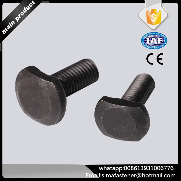 Stainless Steel Square T Head Bolt
