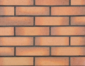 Multi Color Exterior Wall Brick Tile