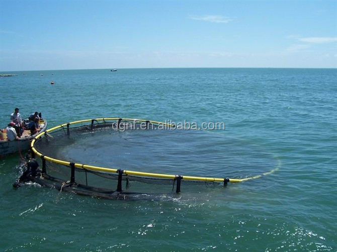 high quality HDPE square fish cage farming in the lake