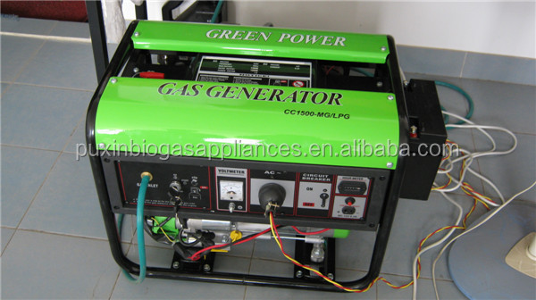 China Small Biogas Electric Generator Methane Gas Generator 1.5KW 3KW 5KW