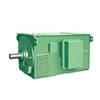 High Voltage 7kv Y Series Electrical Motor