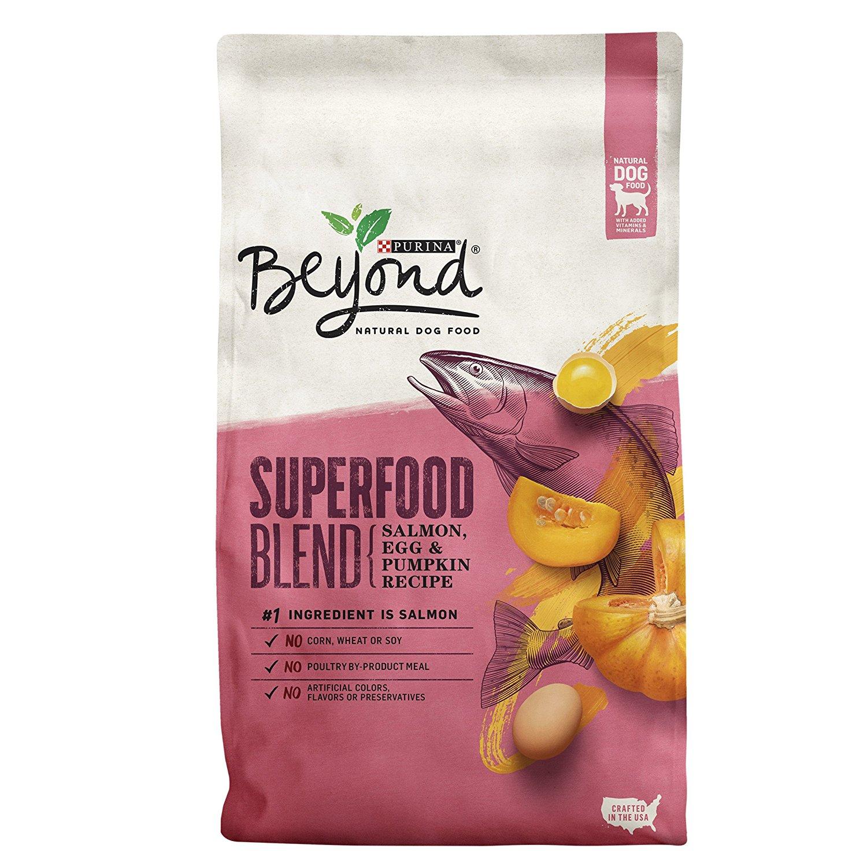 Purina Beyond Superfood Blend Salmon, Egg & Pumpkin Recipe Adult Dry Dog Food - 7 lb. Bag