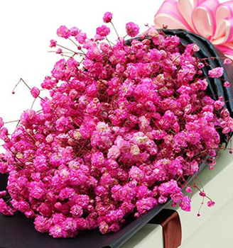 Flower arrangement stands fancy items flower gypsophila pink flower arrangement stands fancy items flower gypsophila pink wholesale mens names of flowers used for decoration mightylinksfo