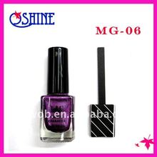 2012 New Arrive Magnetic Nail Polish