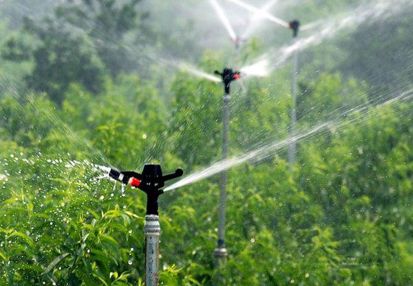 Long Life Time Fjy8005 Garden Metal Sprinkler Head Irrigation