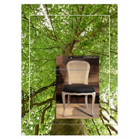 2015 French Wooden Louis Chair,Wooden Rattan French Dining Chair,Modern Wooden Fabric French Louis chair and louis chairs