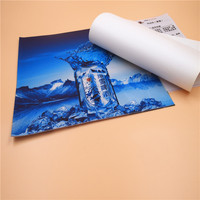 230g-510g High Glossy Printing Material PVC Flex Advertising Banner Wholesale