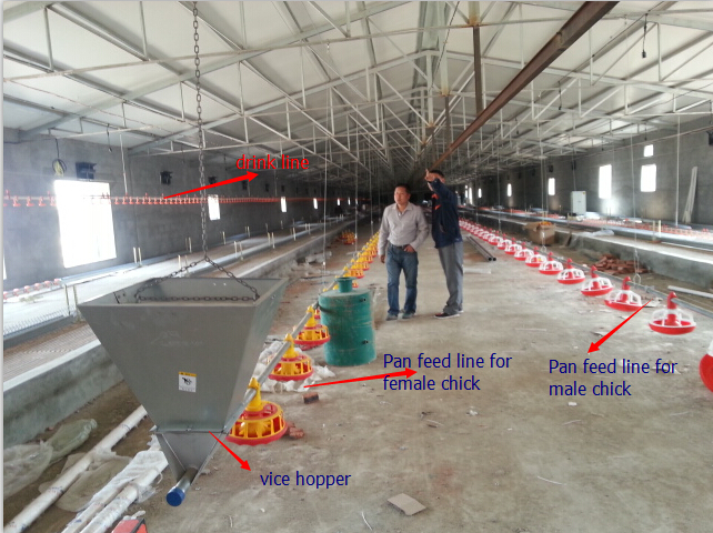 poultry farming business plan in marathi oven