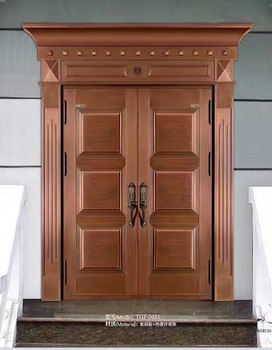 Steel door design catalogue copper entry door steel gate for Door design catalogue