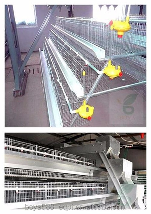 Chicken ,quail etc,Rabbit Use and Steel Mesh with Zinc Plating Material laying hen cage