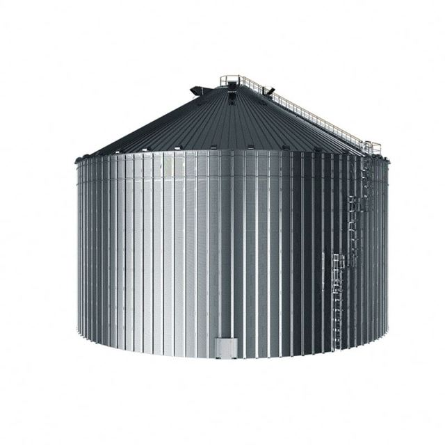 Stainless Steel Silos for Coffee bean,Corn,Grain Storage China
