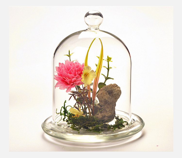 Delicieux China Factory Home Decor Customized Terrarium Clear Bell Jars Glass Domes  Wholesale