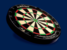 Competitive price dart board