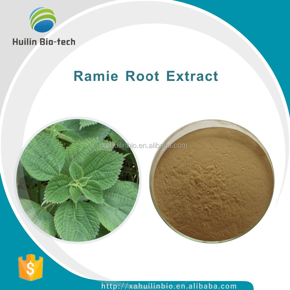 Supply with best price, 10:1, Ramie Root P.E./Ramie Root Extract Powder