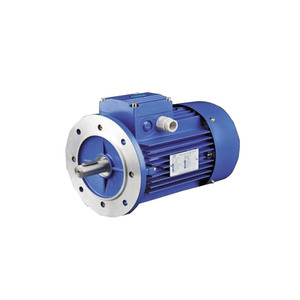 Y2EJ Series Electromagnetic Braking Three-Phase Asynchronous Motor