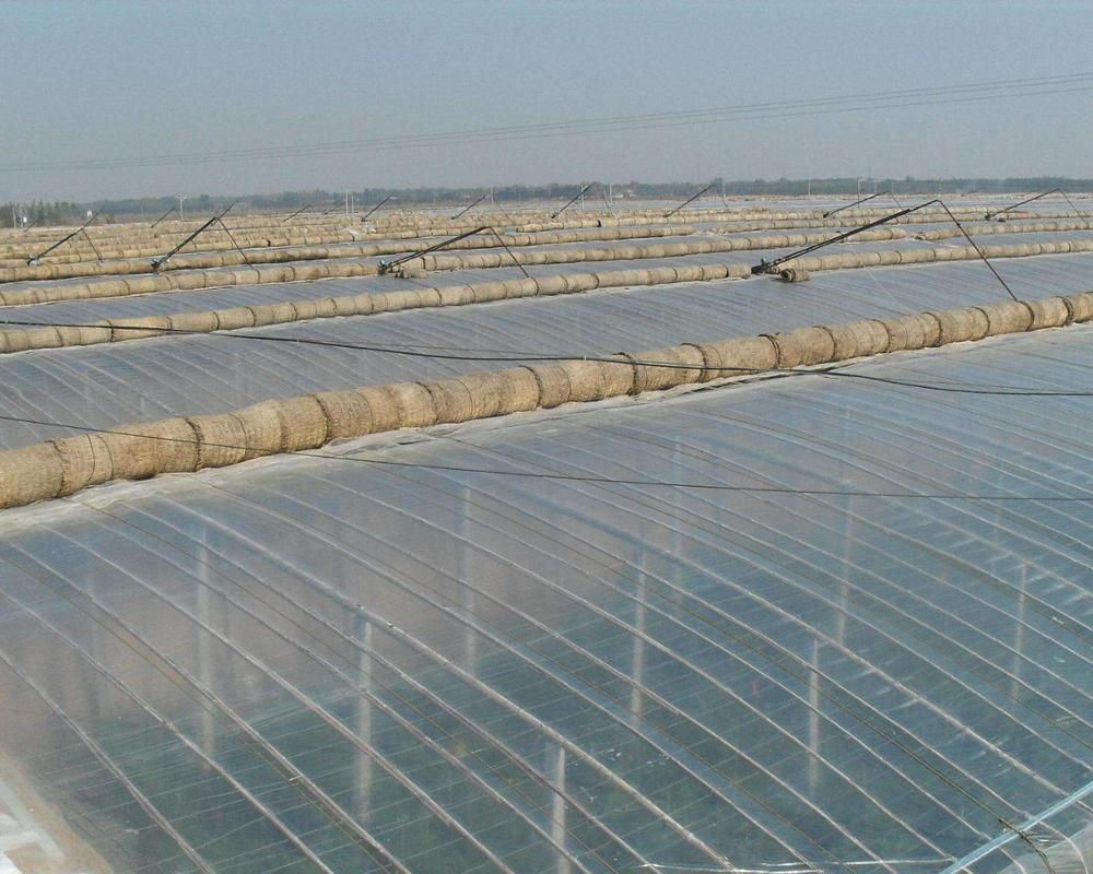 Metallocene EVA PE or PO Material Anti-aging UV Stabilized High Strength  Agricultural Greenhouse Film