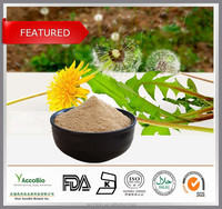 High Quality 100% Natural Certificated Organic Mongolian Dandelion Herb Root Extract Powder