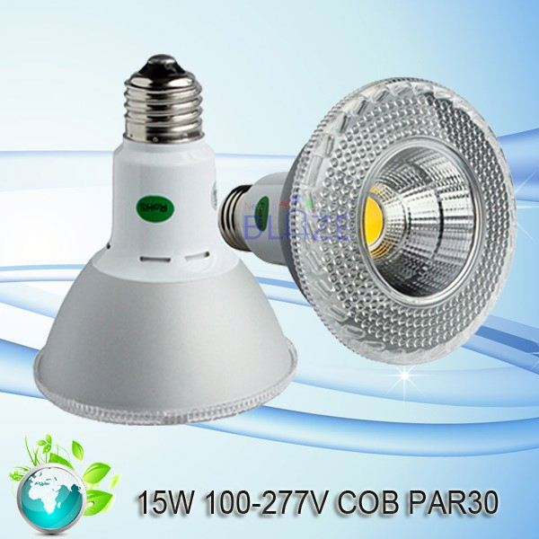 Super bright bulb par30 led spot light 6w indoor lamp