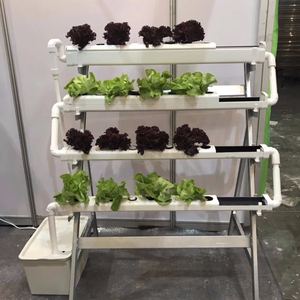Vertical Hydroponic System with Metal Frame