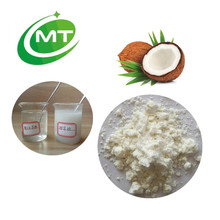 Pure Organic Coconut milk Extract Powder fine grade Instant Coconut Powder
