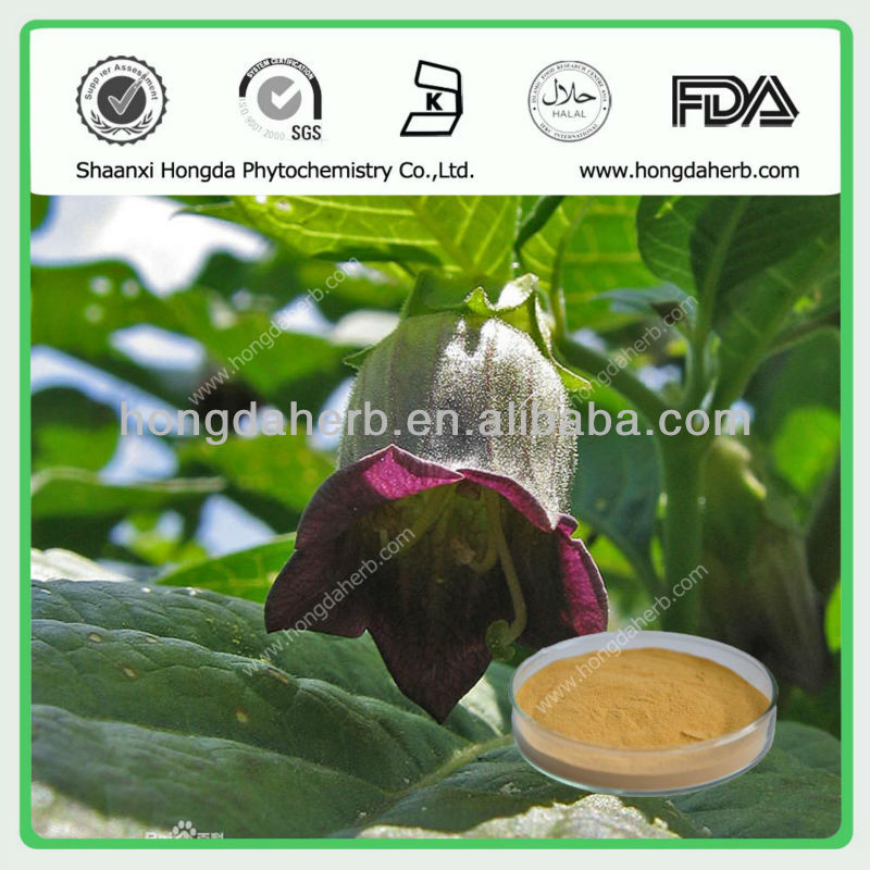 Natural Atropa Belladonna Leaf Extract