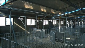 Manufacture pig pens design for piggery farm