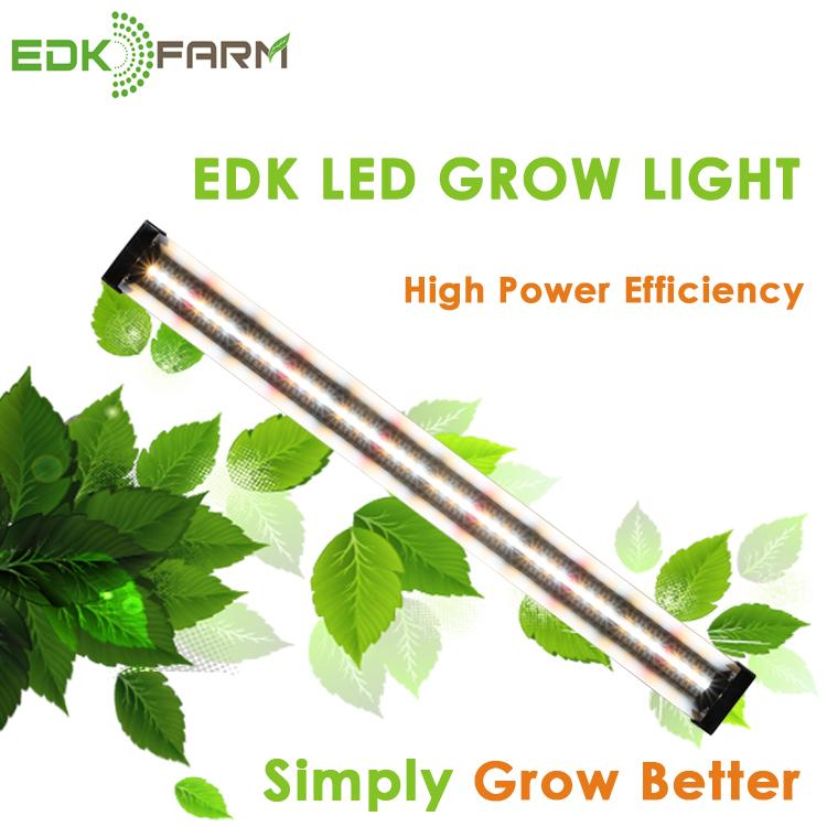 Nz Best Plant Lamp Supply Malaysia Full Spectrum Bar Wall ...