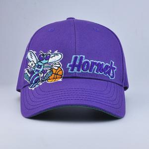 b353bfaf8245b Printing Purple Baseball Cap