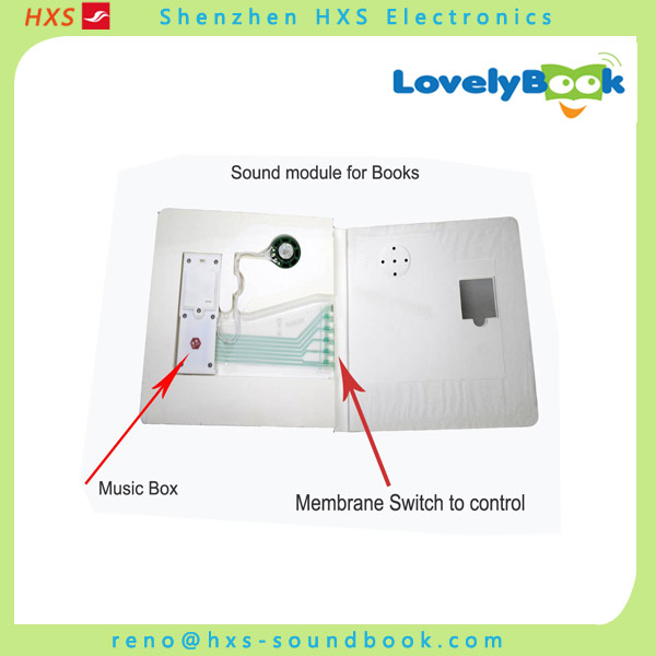 Custom Musical Sound Module With Membrane