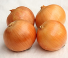 Fresh yellow onion brown onion non peeled onion price 1 kg