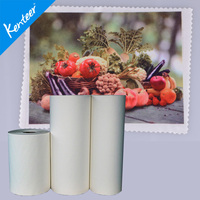 Kenteer adhesive sublimation transfer paper for t-shirt