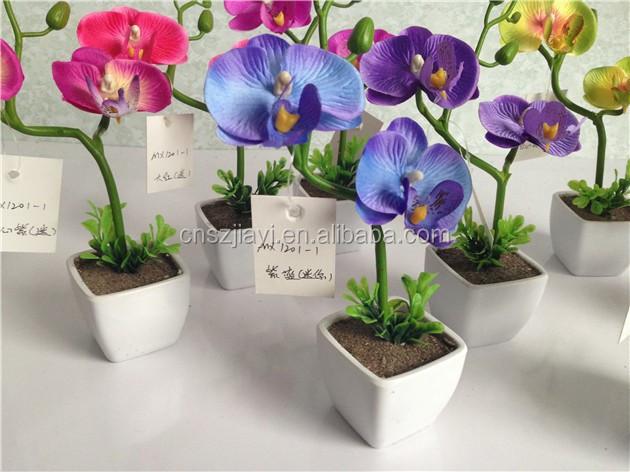 haute qualit mini pot papillon orchid e fleur pas cher en. Black Bedroom Furniture Sets. Home Design Ideas