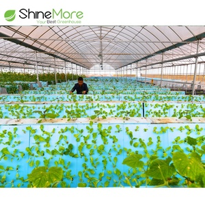 SHINEMORE Complete Greenhouse System Electric Greenhouse Vent Motors