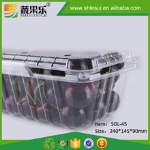 Disposable plastic food fruit cherry packaging clamshell box