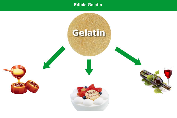 high quality food beverage gelatin powder for ice cream buy food