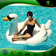 2016 New China Fashion Custom Inflatable Pool Toys/Giant Inflatable Water Toy