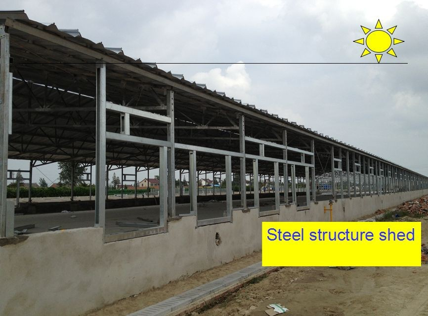 prefabricated steel structure chicken projects
