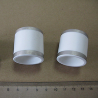 High Purity Alumina Metallized Ceramic Insulator for Brazing