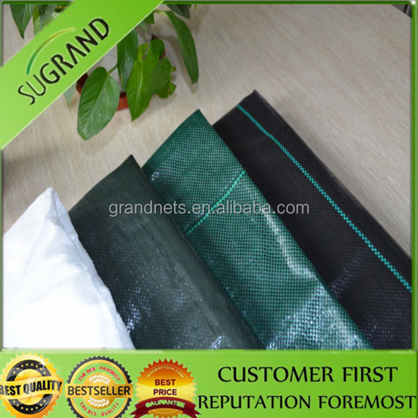 Windbreak Mesh For GardenPlastic Pvc SheetClear Plastic Sheet