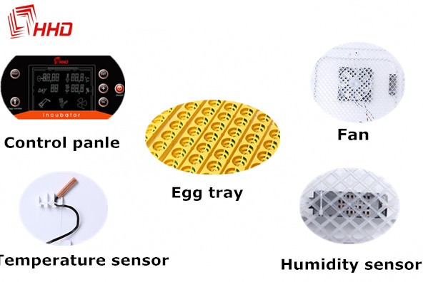 hot sell egg testing function chick egg hatch machine for hatching eggs FCC passed