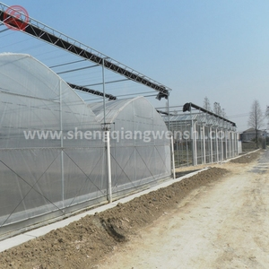 The cheapest hot sale plastic greenhouse hydroponic systems for tomato